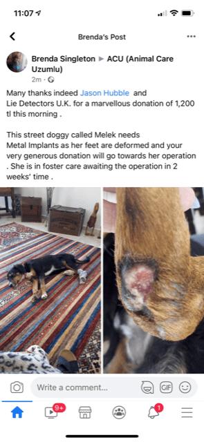 Charity Donation to Animal Care Uzumlu Lie Detectors UK